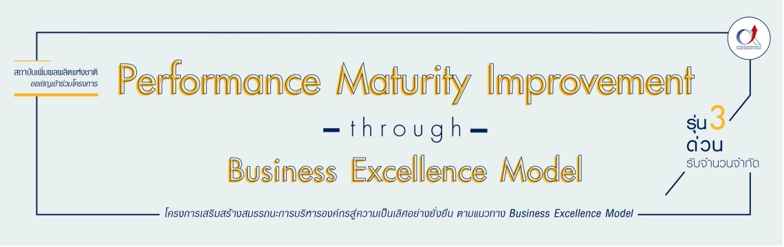 Performance Maturity Improvement through Business Excellence Model
